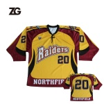 Ice Hockey Jersey Customized